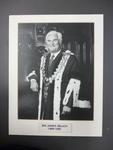 James Belich, Mayor